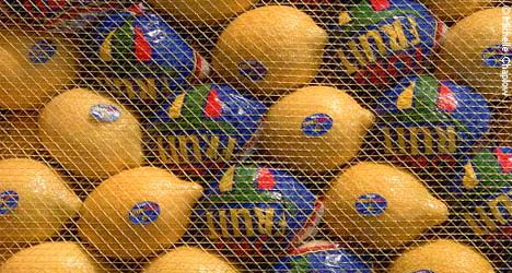 Spain is one of the largest producers of citrus fruits in the world