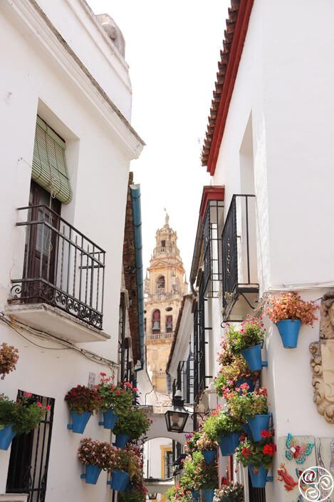 A view down Callejón de las Flores © Max Phythian