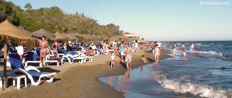 Playa de las Cañas
