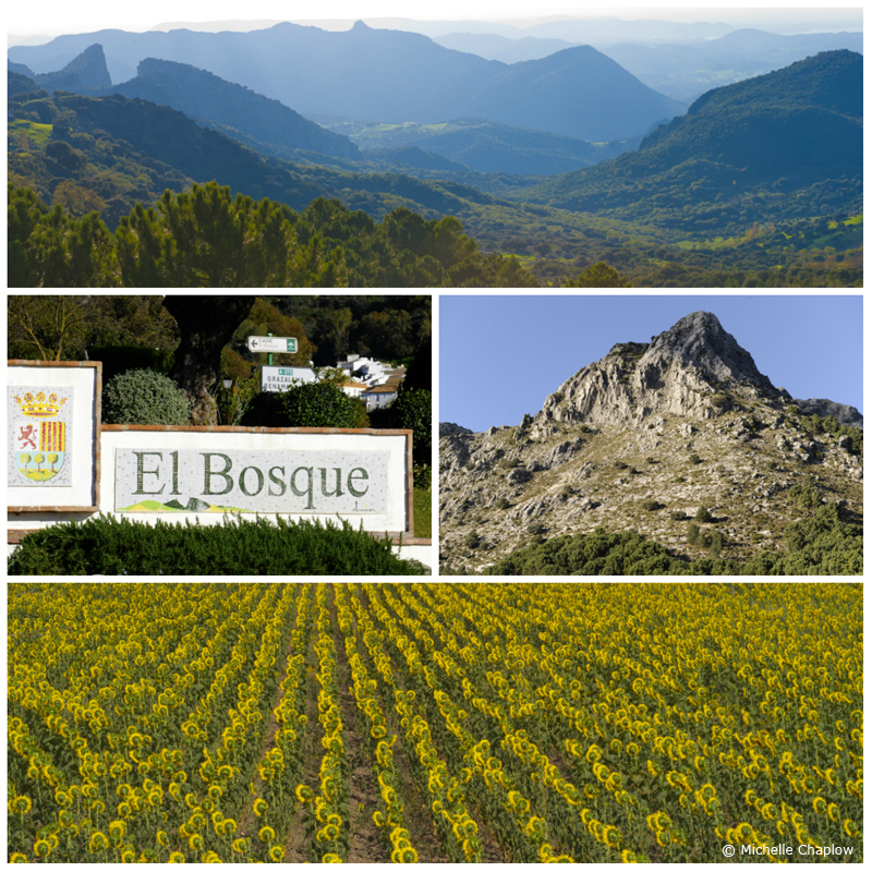 El Bosque is situated at the foot of the Sierra de Grazalema  © Michelle Chaplow