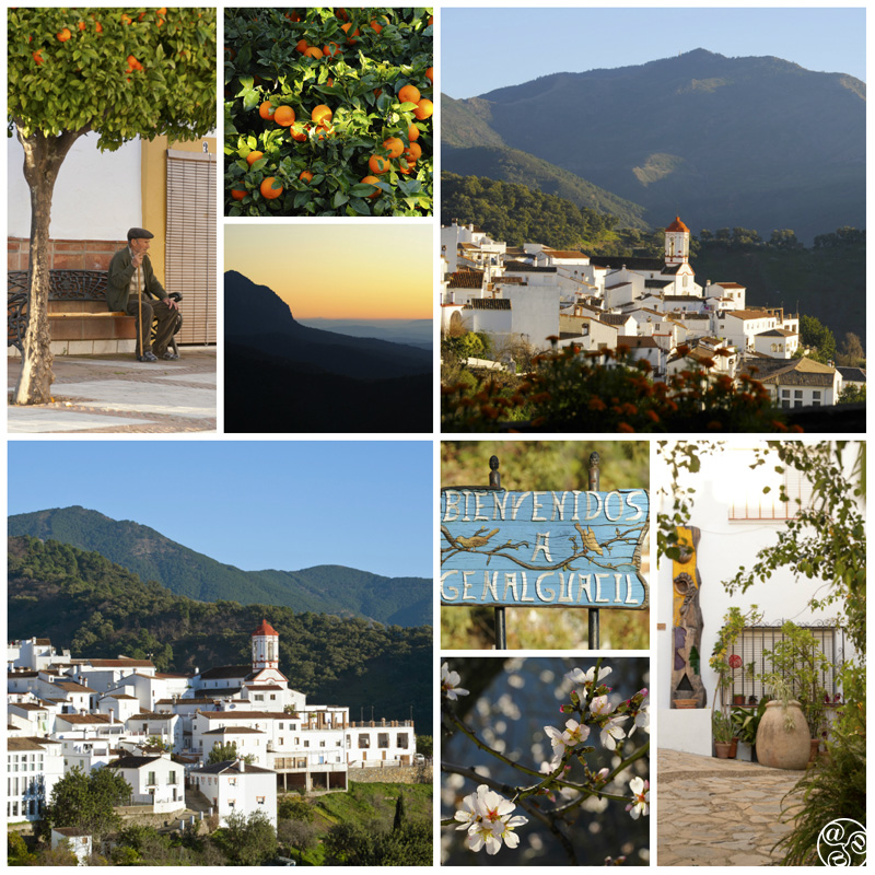 Genalguacil is one white Andalucian mountain village © Michelle Chaplow