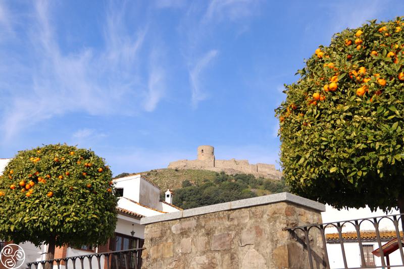View of the castle of Jimena de la Frontera through orange trees