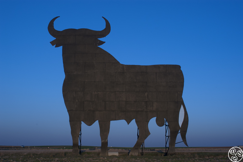 The Iconic Osbourne Bull © Michelle Chaplow