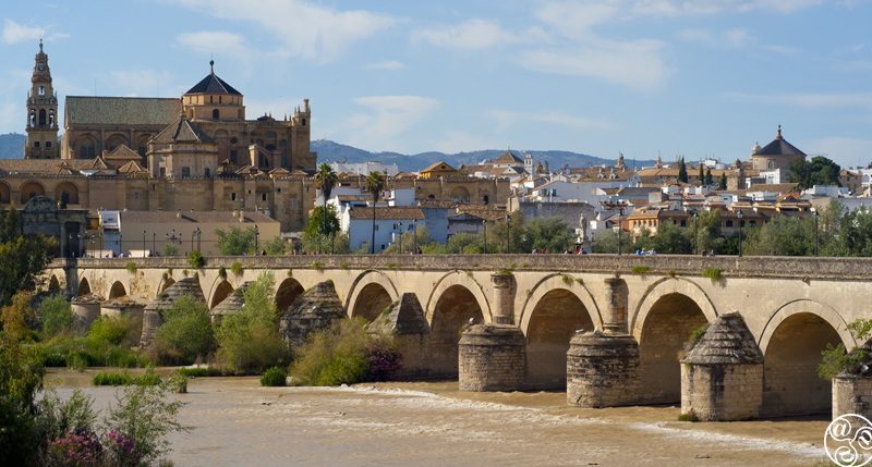 The Roman Bridge (Puente Romano) of Cordoba  © Michelle Chaplow