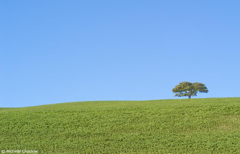 Rolling plains of Cordoba © Michelle Chaplow