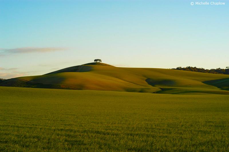 The fertile plains, near Arcos de La Frontera, Cadiz. © Michelle Chaplow