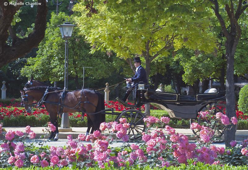 Plaza de América in Sevilla © Michelle Chaplow