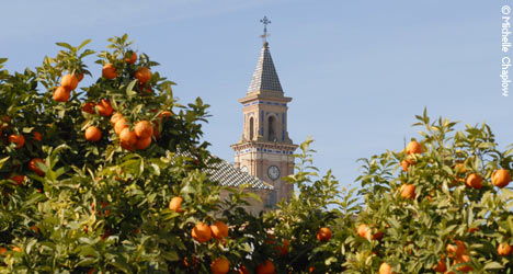 Orange trees and Church spires are emblematic elements of Carmona © Michelle Chaplow