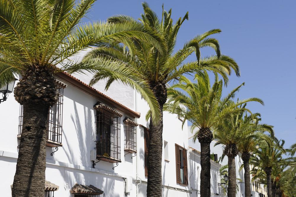 Sunny streets of San Martin del Tesorillo © Michelle Chaplow