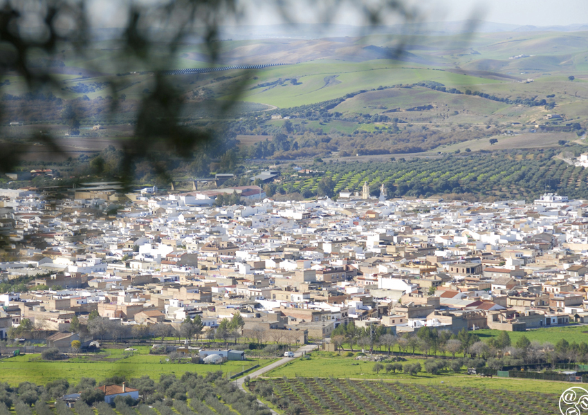 Nestled in the valley the village of Puerto Serrano © Michelle Chaplow