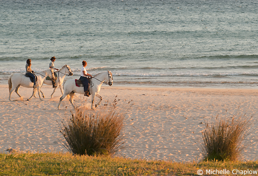 Horse Riding in Tarifa © Michelle Chaplow
