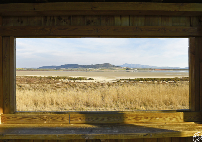 Looking out to the lagoon from the observatory © Michelle Chaplow