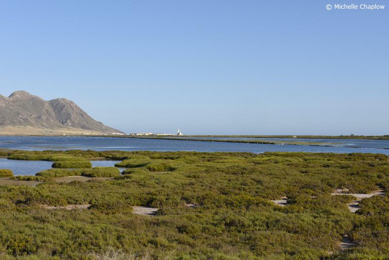 Salt marshes, Cabo de Gata, Almeria, Andalucia © Michelle Chaplow