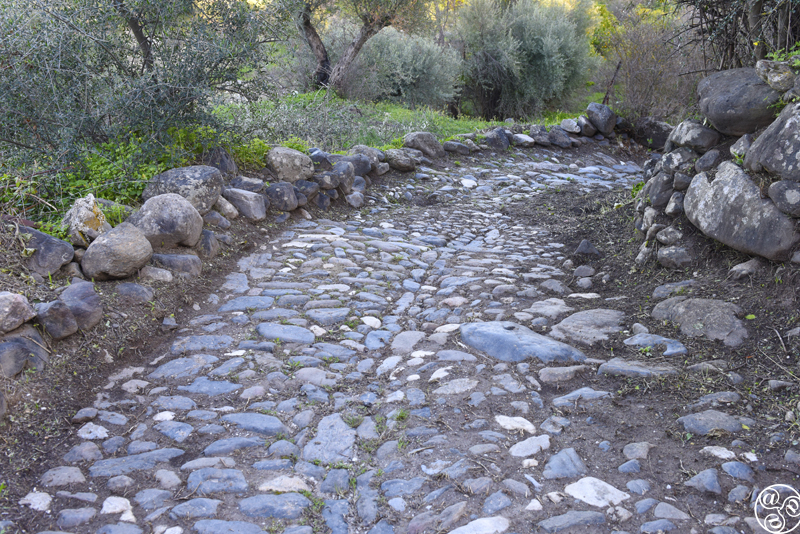 Remains of the Roman Road from Monda to Cártama © Michelle Chaplow