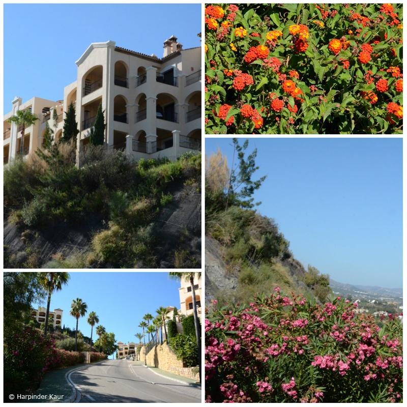 Ronda Road districts in Marbella. © Harpinder Kaur