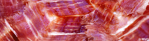 <em>Jamon iberico </em>- one of Spain's most famous gastronomic products. Photo: Michelle Chaplow