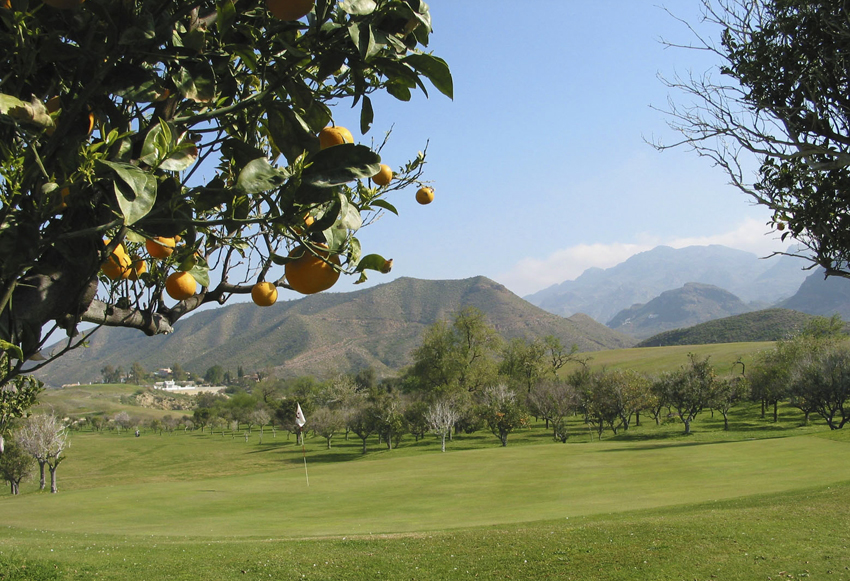 Cortijo Grande Golf Resort © Cortijo Grande Golf Resort