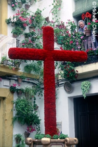 Córdoba crosses are the most famous. © Michelle Chaplow
