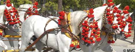 Jerez Horse Fair