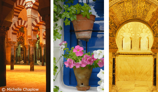 Cordoba just loves your camera ©Michelle Chaplow