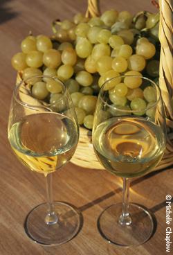 © Michelle Chaplow Wines from Huelva