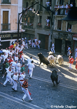 The Running of the Bulls. © Michelle Chaplow