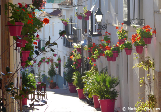 Estepona's winding streets are bursting with colour thanks to their lovely flowerpots. © Michelle Chaplow .