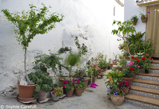 A delightful patio in Totalan. © Sophie Carefull