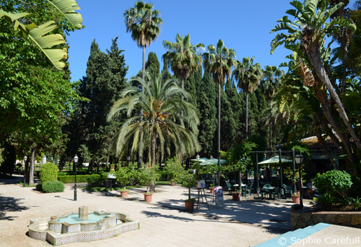 Parque de la Constitucion with its cafe and palm trees. © Sophie Carefull