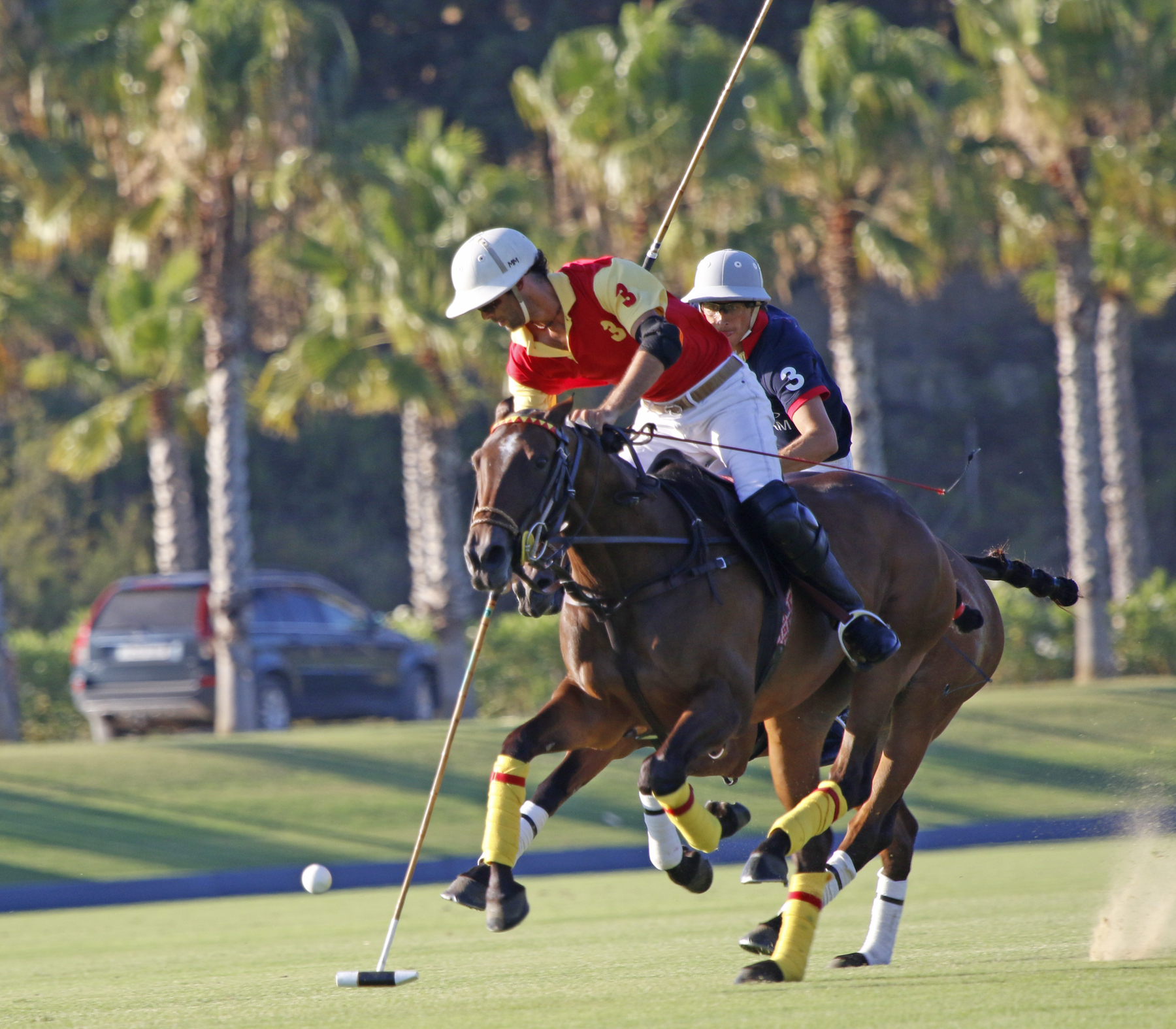 Polo in Sotogrande. © Santa Maria Polo Club