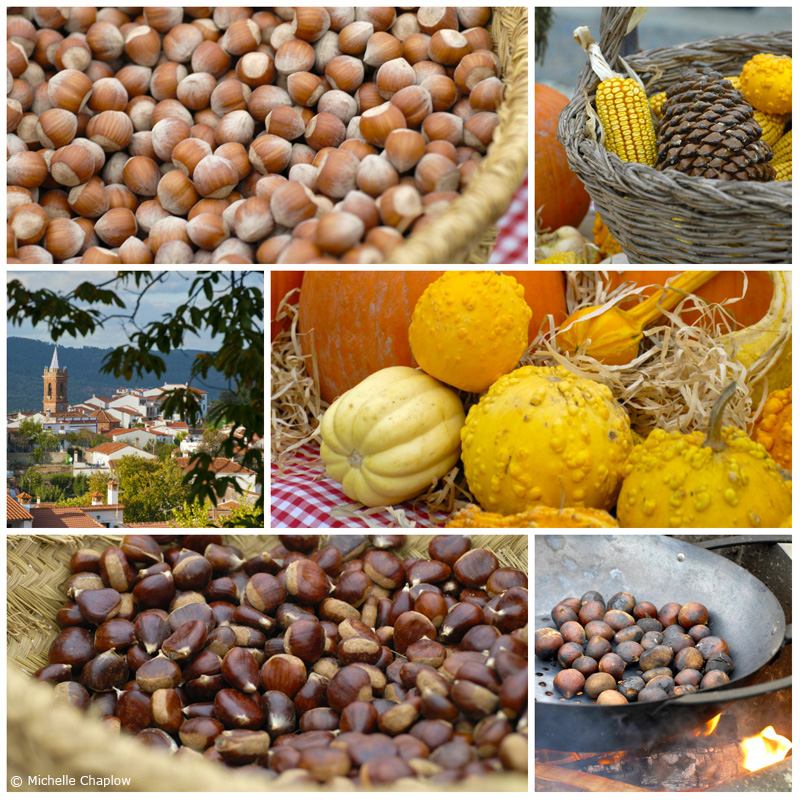 Roast Chestnuts, hazelnuts, squash and pumpkins. An autumn scene in the village of Fuenteheridos ©Michelle Chaplow