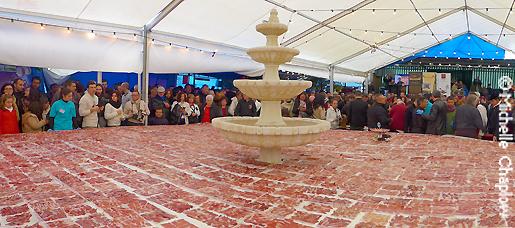 47m2 plate of ham at the 2014 Feria Gastronomica de la Serrania de Ronda. © Michelle Chaplow .