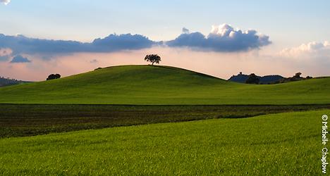 © Michelle Chaplow Velvet rolling hills just south of Seville