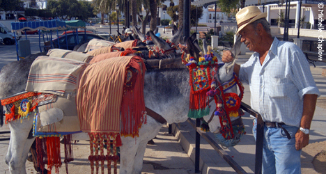 © Michelle Chaplow You may have the urge to swap the hire car for a donkey in Mijas