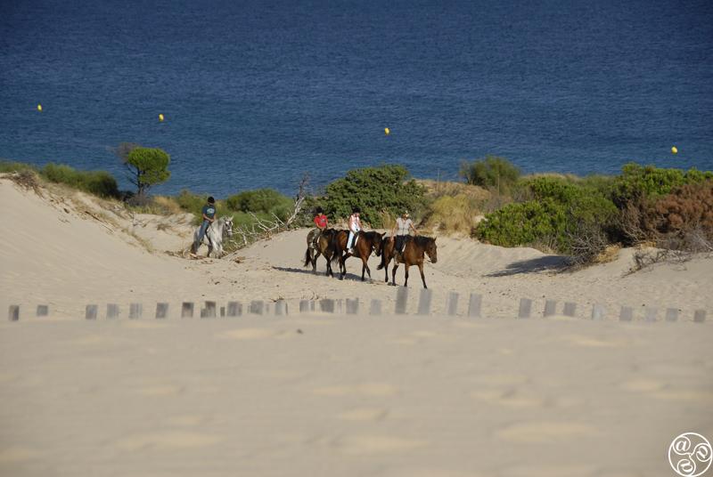 Horse Ridding In Tarifa ©Michelle Chaplow
