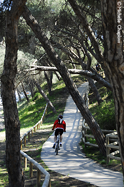 Andalucia is a cyclist's paradise. © Michelle Chaplow