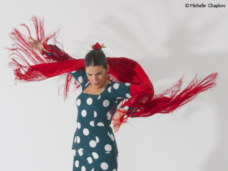 © Michelle Chaplow  flamenco has descended from the ancient dances of the Indian Hindus