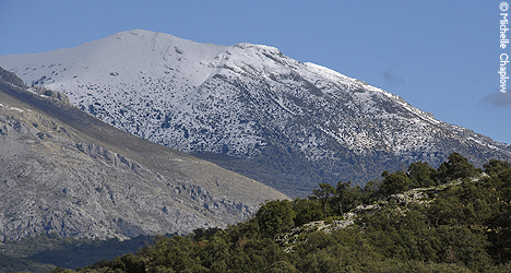 © Michelle Chaplow Snow on the Sierra de las Nieves