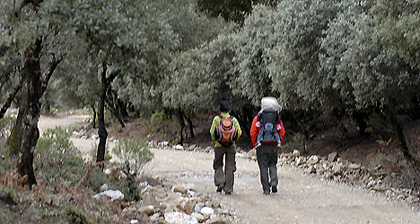 © Michelle Chaplow Walking in the Sierra de las Nieves nature reserve