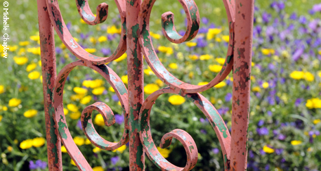 © Michelle Chaplow Wrought iron gates and wild flowers in Benalup