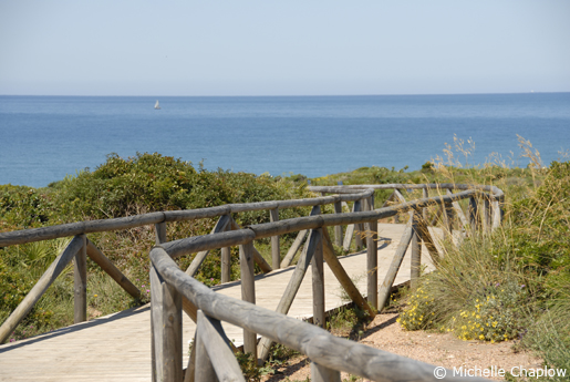 The beaches in Chiclana are backed by lush greenery.© Michelle Chaplow .
