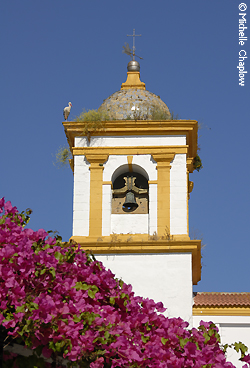 © Michelle Chaplow Storks, churches and bourganvillea in Chiclana