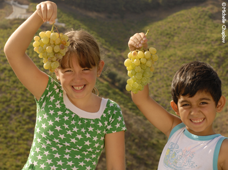 © Michelle Chaplow Local children enjoying the harvest, vinyards of Jorge Ordoñez, Malaga