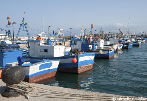 Fishing boats in the port in Tarifa. © Michelle Chaplow