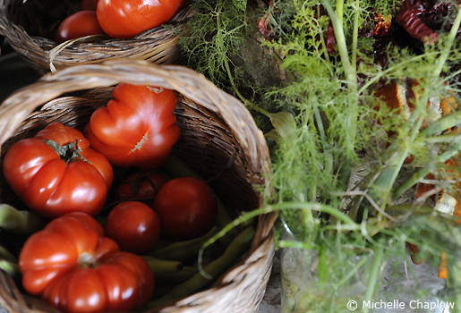 Organic produce  © Michelle Chaplow .