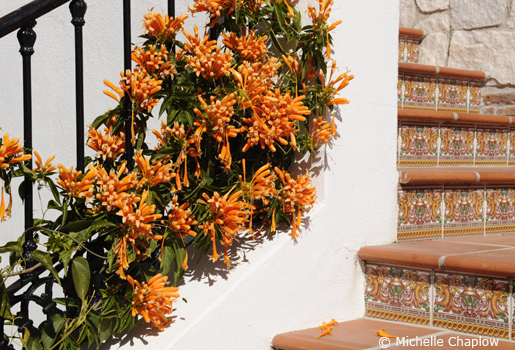 The white village of Mijas Pueblo is a perfect holiday base.  © Michelle Chaplow .