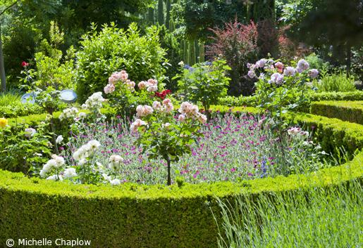 Back lighting splendor in the Generalife gardens.  © Michelle Chaplow