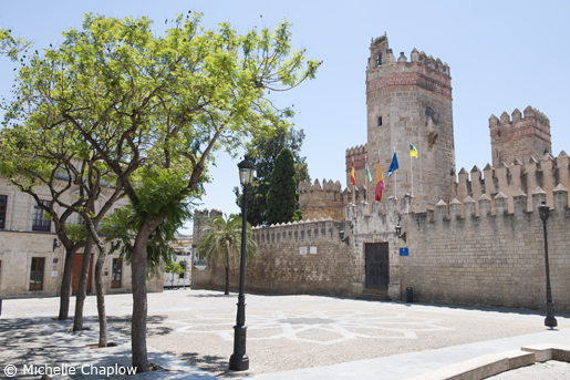 Plaza de Alfonso X El Sabio. © Michelle Chaplow