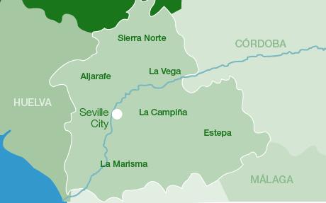 Aljarafe Villages Of The Aljarafe Area In The Province Of Seville