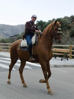 Horse rider at Fiesta de San Anton 2014. © Sophie Carefull